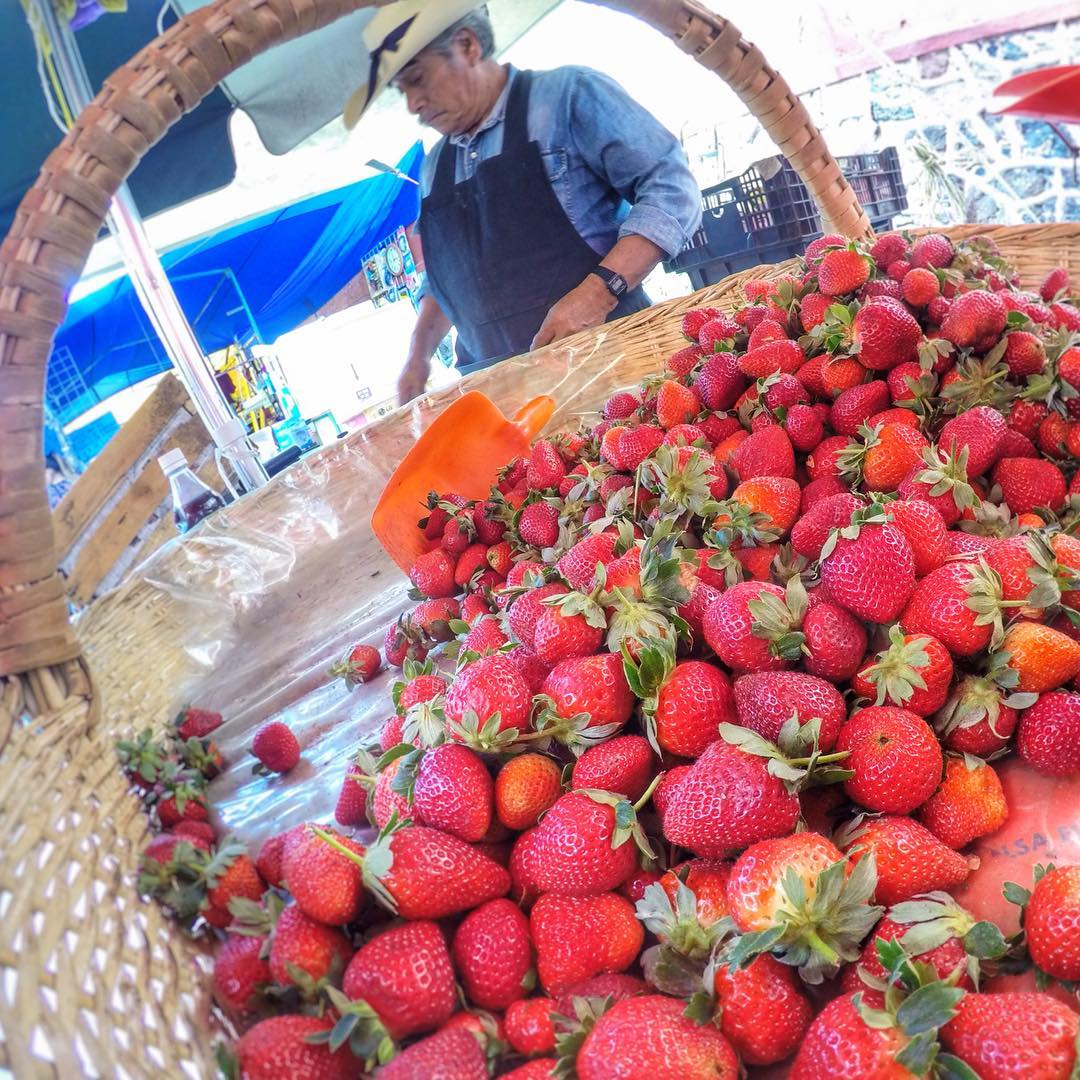 The best #strawberry in #mexico from Don Sergio in the Wednesday #farmersmarket in #tepoztlan #LaVillaBonita #CulinaryVacation #mytepoz #eatlocal #freshfood