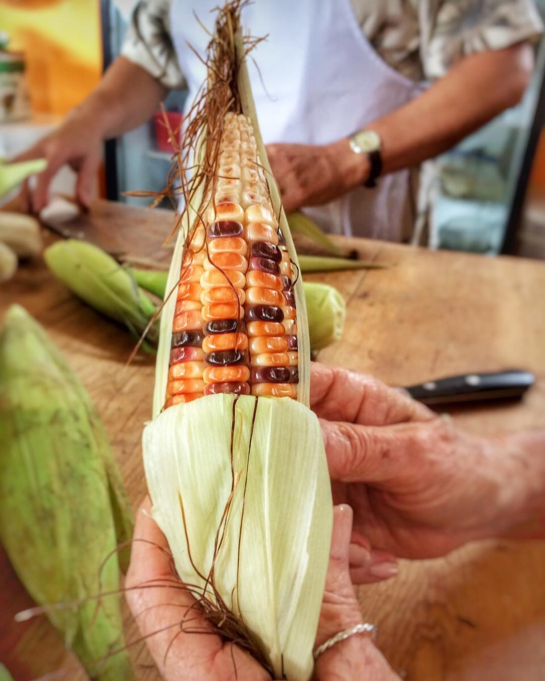 It is National #maize day in #mexico. I cannot think of a more important ingredient in #mexicancuisine guests made fresh corn tamales to be donated to our colonia for the local festival #lavillabonita #realmexicanfood #mytepoz #diadelmaiz